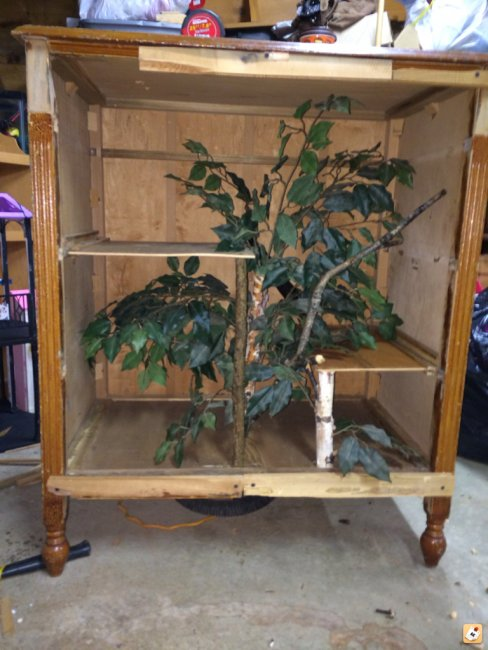 How To Build A Terrarium Out Of A Dresser Our Reptile Forum