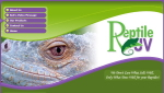 Our Reptile Forum